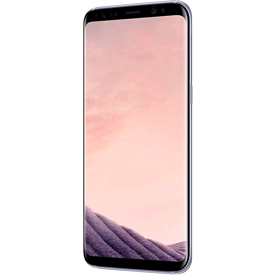 Samsung Galaxy S8 Dual-SIM SM-G9500 64GB, Orchid Gray