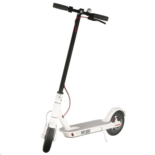 Xiaomi Mi Electric Scooter M365 (White, EU Version) - EXPANSYS Hong Kong