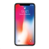 Apple iPhone X A1865 -太空灰