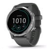 Garmin Vivoactive 4 GPS Smart Watch (Shadow Grey / Silver)