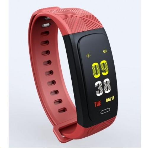 Tec Sante IP68 GPS Intelligent Color Screen Smart Bracelet SW20