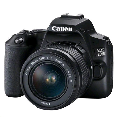 Canon EOS 250D + EF-S 18-55mm f/3.5-5.6 DC III Lens Kit